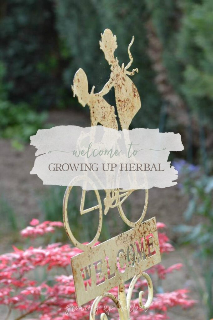 Welcome To Growing Up Herbal! | Growing Up Herbal | Welcome to my online home, mama! I'm here to tell you who this site is for and what it's all about! Come on in and make yourself comfy!