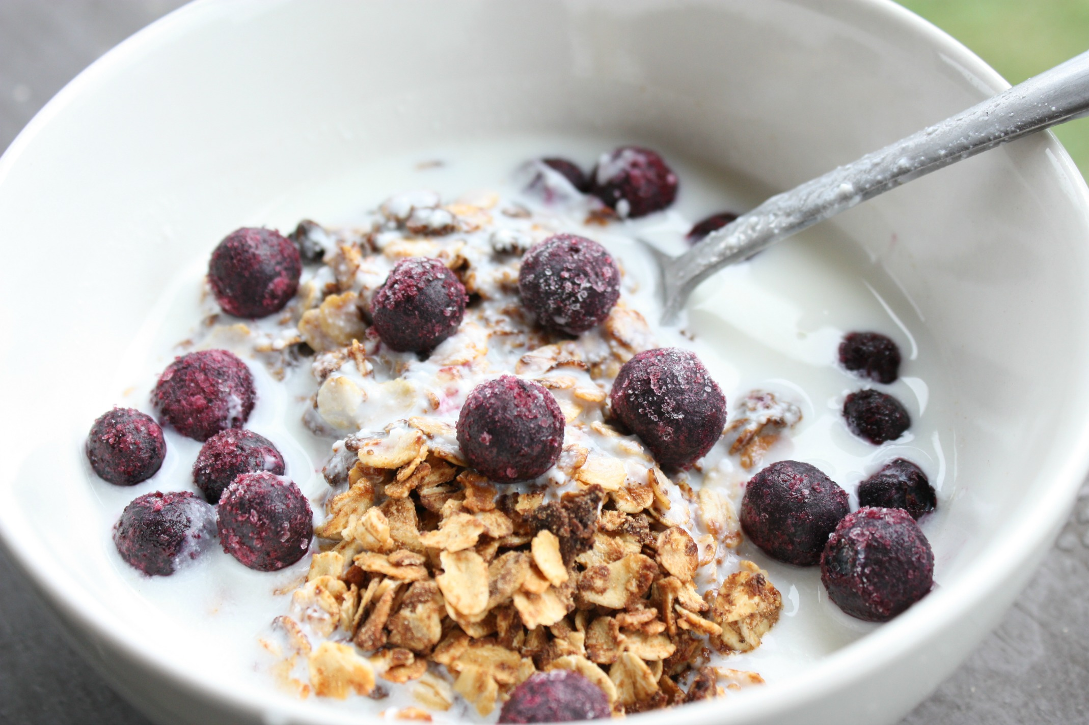 Yummy Kefir Granola with Berries | Growing Up Herbal | Health and convenience collide with this delicious, good for your gut breakfast of champions! Get the recipe here.