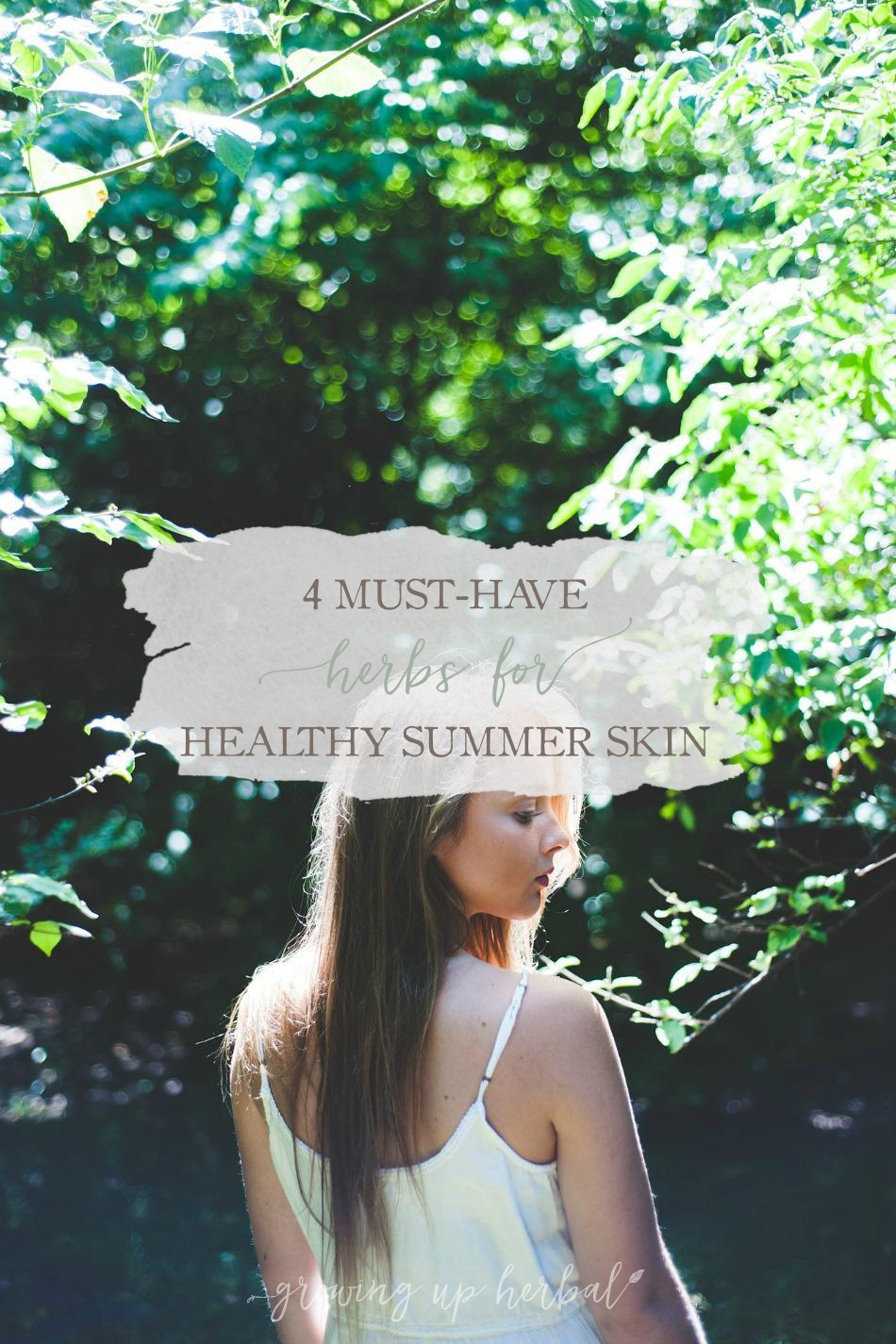 4 Must-Have Herbs For Healthy Summer Skin | Growing Up Herbal | Here are four herbs to use for healthy summer skin!