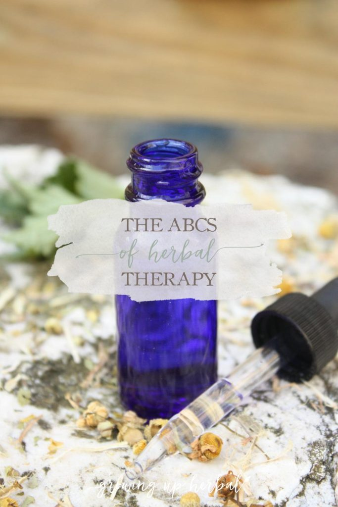The ABC's of Herbal Therapy | Growing Up Herbal | Using herbs for your kids can be as easy as ABC. Find out how!