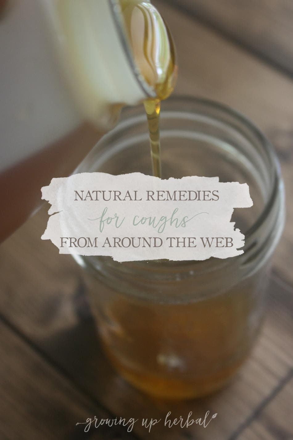Natural Remedies For Coughs From Around The Web   Growing Up Herbal   Enjoy these great cough remedies from bloggers around the web!