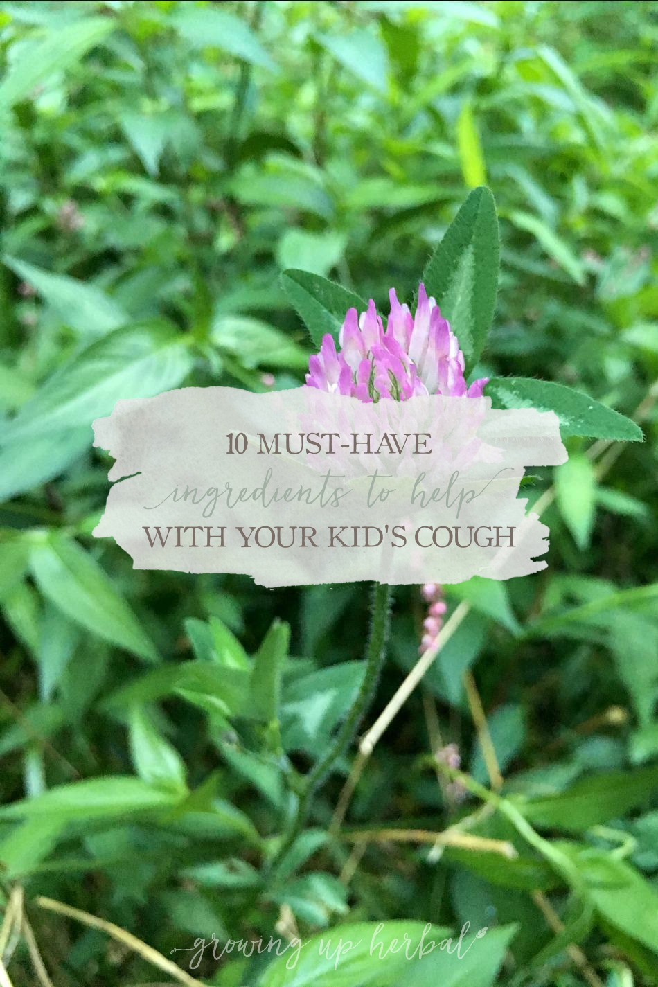 10 Must-Have Ingredients To Help With Your Kids Cough | Growing Up Herbal | Kids get coughs... it's that simple. Here are 10 ingredients to keep on hand to help calm their coughs naturally.
