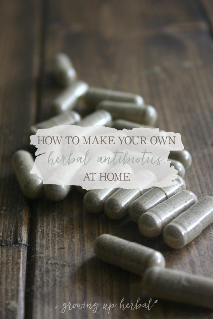 """How To Make Your Own Herbal Antibiotics At Home 