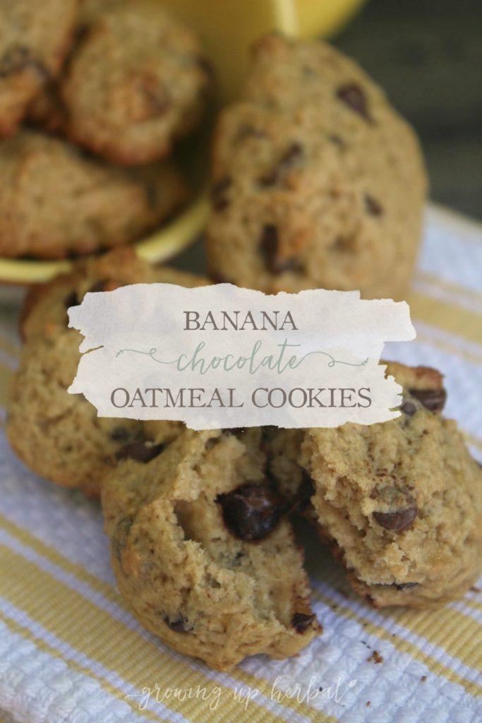 banana-chocolate-oatmeal-main.jpg