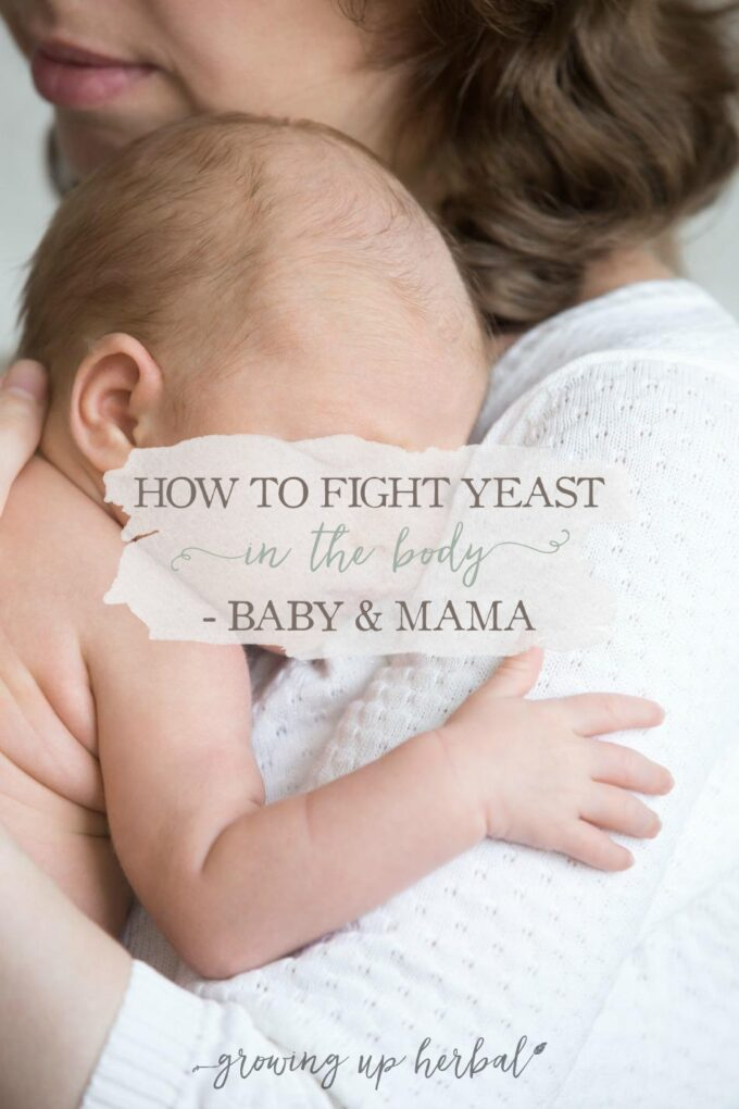 How to Fight Yeast In The Body - Baby & Mama   GrowingUpHerbal.com   How to overcome thrush and yeast issues in baby and mama.
