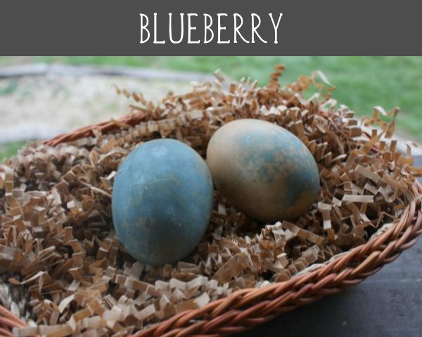 blueberry eggs