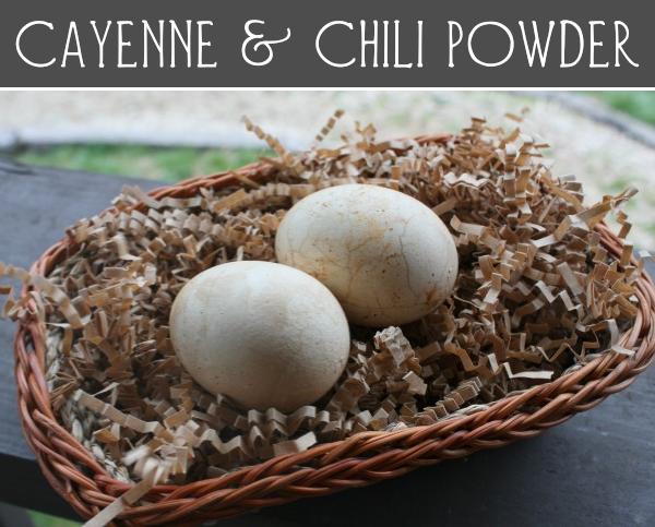 cayenne eggs