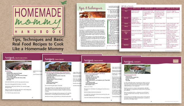 Inside of the Homemade Mommy Handbook