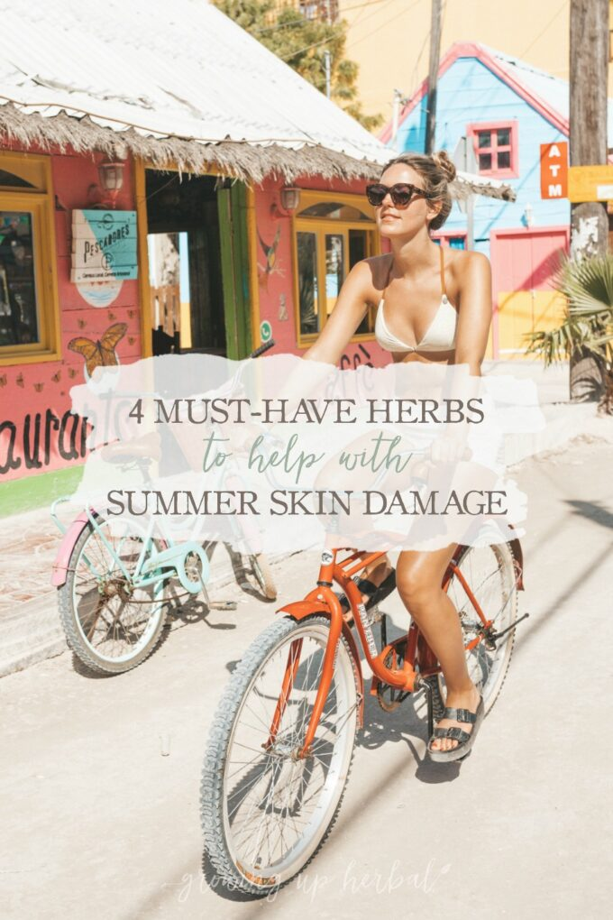 4 Must-Have Herbs to Help with Summer Skin Damage   Growing Up Herbal   Looking for help for sun damaged skin this summer? Here are four herbs that can come to your rescue!