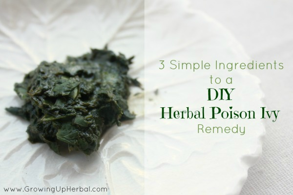 DIY Herbal Poison Ivy