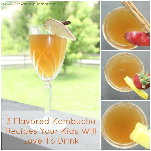 3 Flavored Kombucha Recipes Your Kids Will Love To Drink