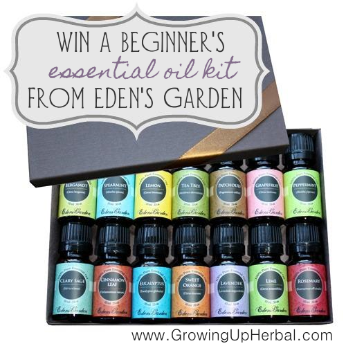 Win a Beginner's Essential Oil Kit from Eden's Garden!!