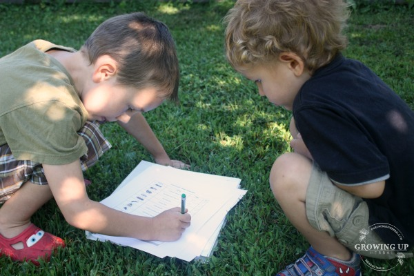Finding & Identifying Bugs