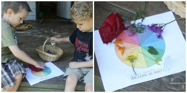 Matching the colors of nature to the color wheel