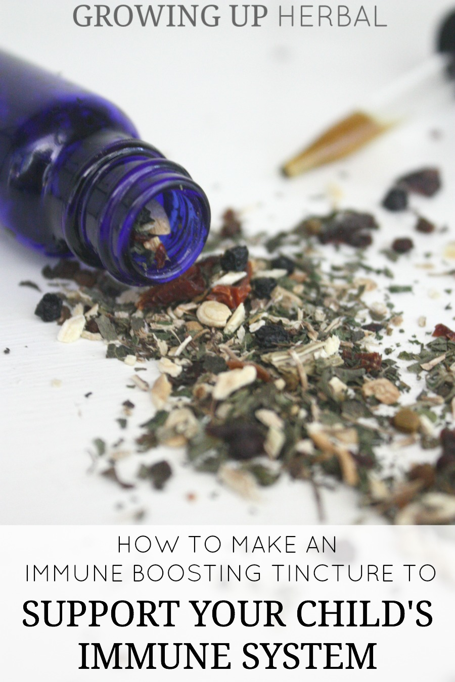 How To Make An Immune Boosting Tincture To Support Your Child's Immune System | Growing Up Herbal | Learn how to make an immune boosting tincture for your kids!