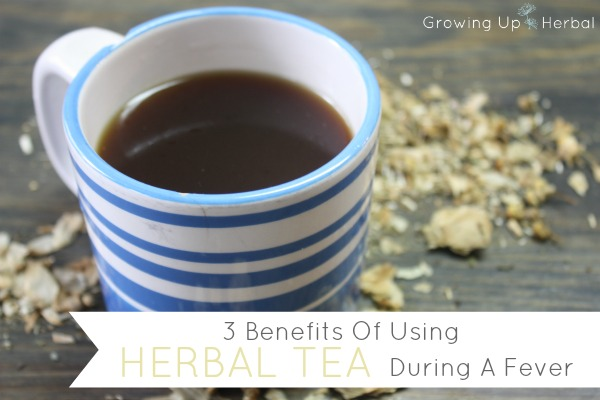 3 Benefits Of Using Herbal Tea During A Fever
