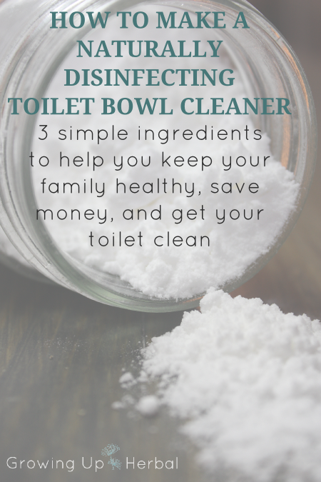How To Make A Naturally Disinfecting Toilet Bowl Cleaner - GrowingUpHerbal.com