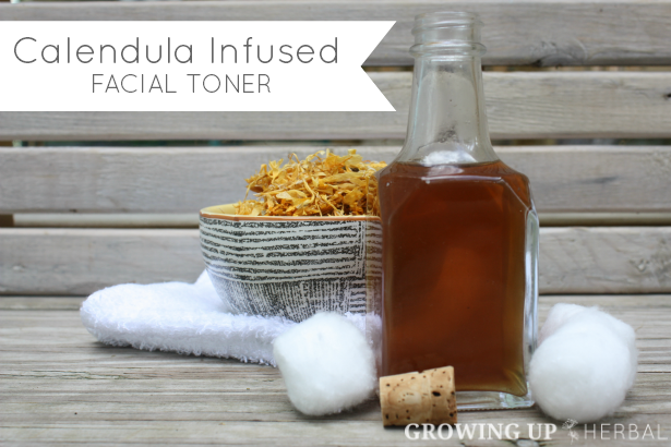 Homemade & Healthy: Calendula Infused Facial Toner | GrowingUpHerbal.com