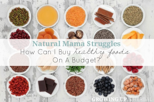 Natural Mama Struggles: How Can I Buy Healthy Foods On A Budget | GrowingUpHerbal.com | Looking to afford healthy foods on a tight budget? Here are 5 tips to help.