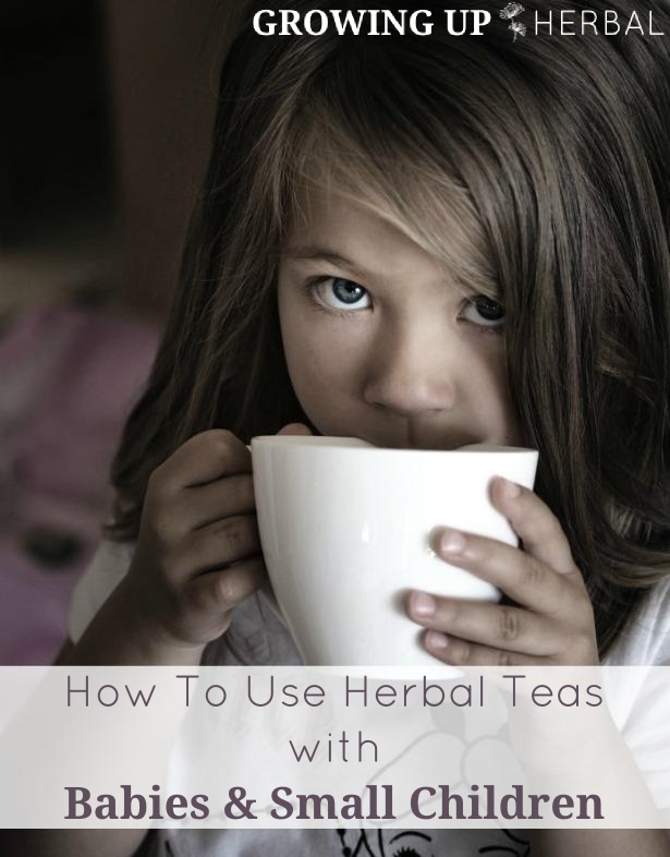 How To Use Herbal Teas With Babies & Small Children | GrowingUpHerbal.com | Learn how to use herbal tea with babies and children.