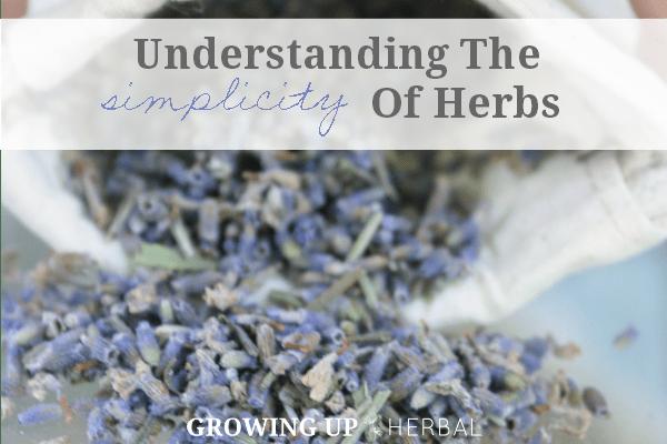 Understanding The Simplicity Of Herbs   GrowingUpHerbal.com