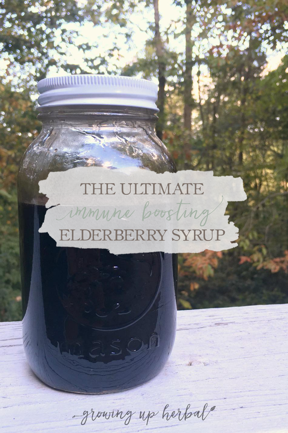 The Ultimate Immune Boosting Elderberry Syrup | GrowingUpHerbal.com | Boost your child's immune system before cold & flu season with this 3-in-1 elderberry syrup!