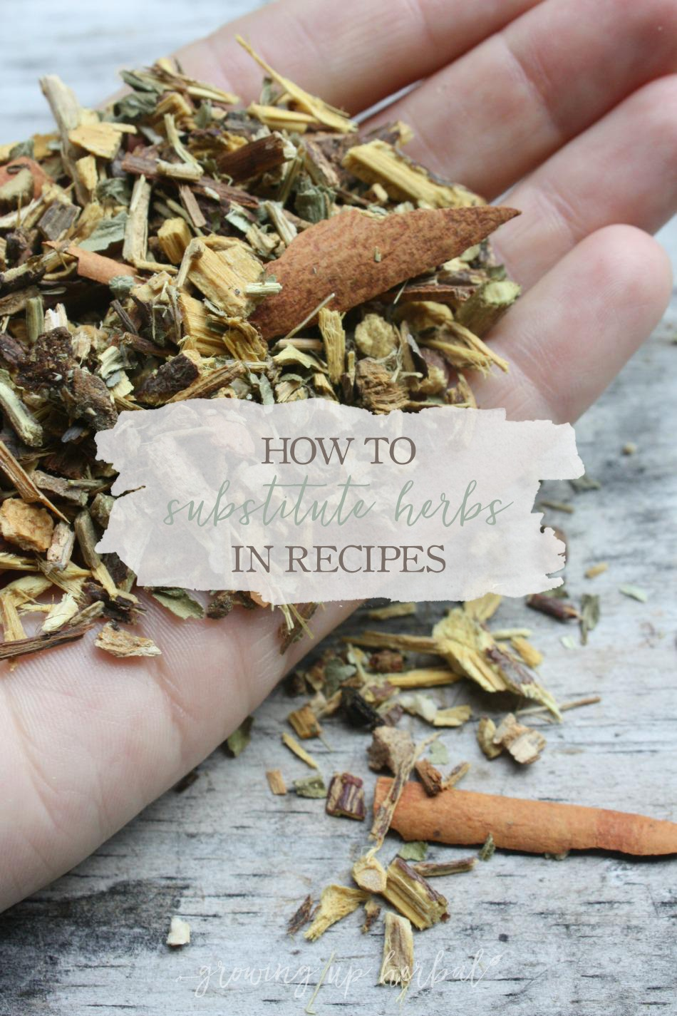 How To Substitute Herbs In Recipes   Growing Up Herbal   Missing an herb in a remedy? Here's how to substitute one herb for another.
