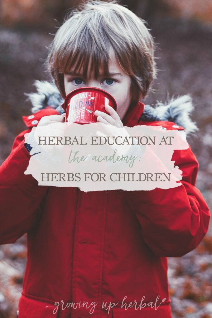 Herbal Education At The Academy: Herbs For Children | Growing Up Herbal | Interested in going to herbal school? Here's a sneak peek at the Herbal Academy's Intermediate herbal course!
