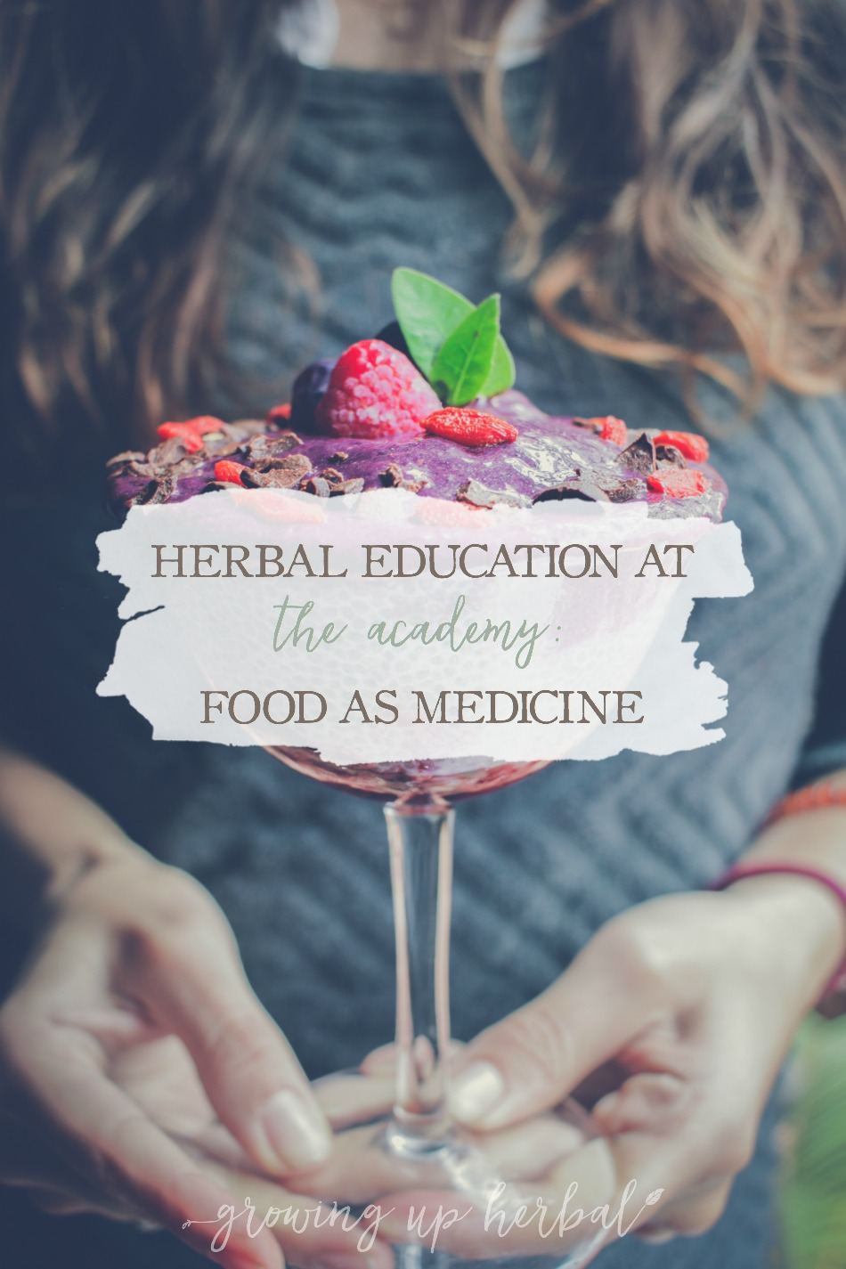 Herbal Education At The Academy: Food As Medicine | Growing Up Herbal | Interested in going to herbal school? Here's a sneak peek at the Herbal Academy's Intermediate herbal course!