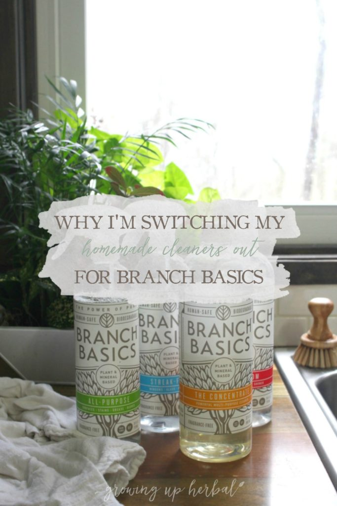 Why I'm Switching My Homemade Cleaners Out For Branch Basics Natural Cleaners | Growing Up Herbal | So you thought homemade natural cleaning recipes were simple? It's true. They are. It's keeping up with the many different cleaners that is overwhelming. Here's how I'm simplifying my natural cleaners.