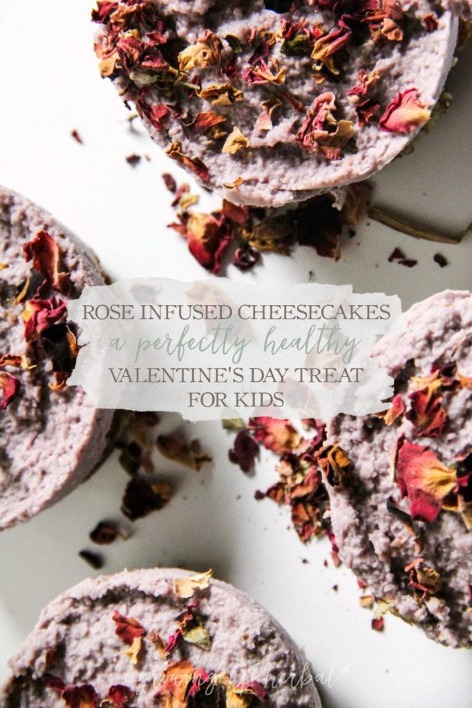 Rose Infused Cheesecakes - A Perfectly Healthy Valentine's Day Treat For Kids | Growing Up Herbal | Looking for a nutritious dessert for Valentine's Day? This rose-infused cheesecake is pleasing to the eye and the taste buds!
