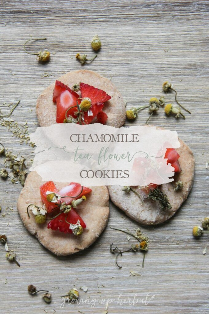Chamomile Flower Tea Cookies   Growing Up Herbal   Delicious little chamomile infused tea cookies. A perfect companion to hot chamomile tea!