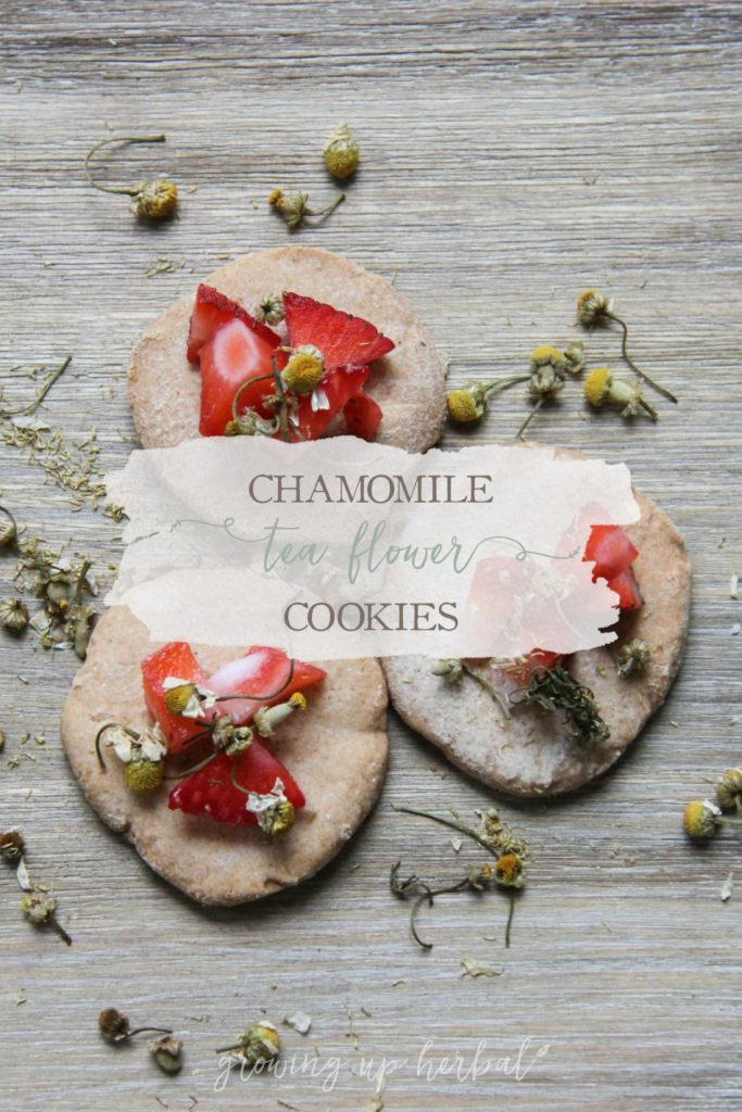 Chamomile Flower Tea Cookies | Growing Up Herbal | Delicious little chamomile infused tea cookies. A perfect companion to hot chamomile tea!