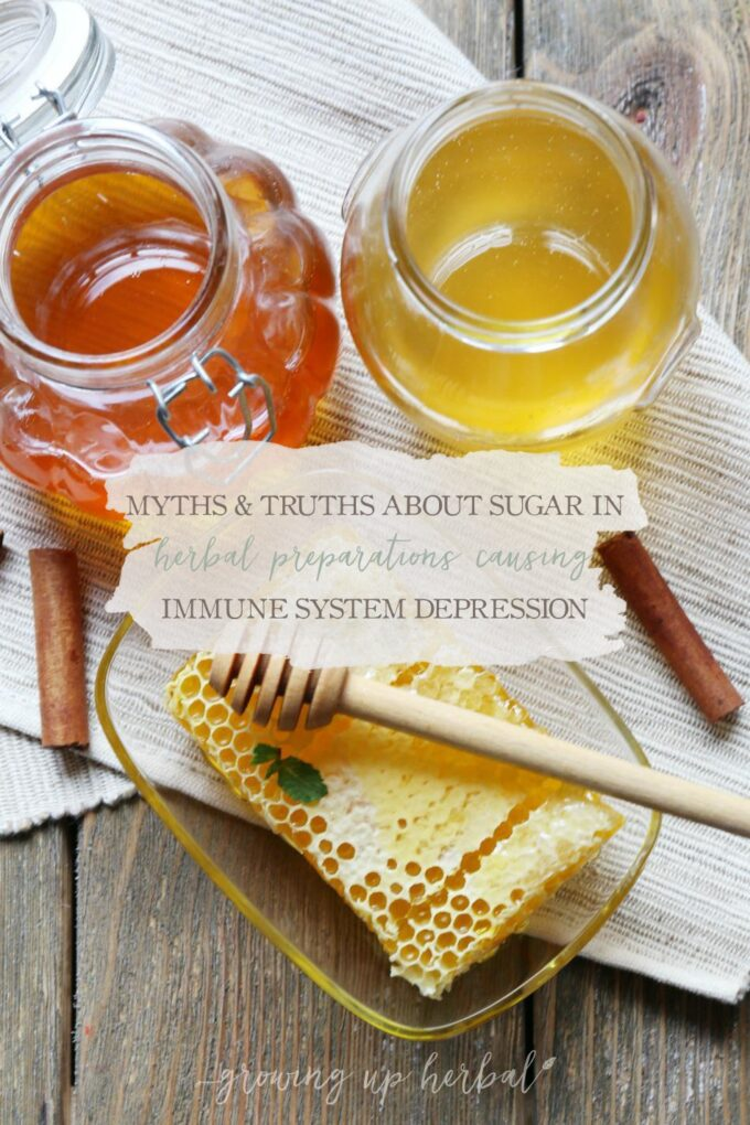 Myths & Truths About Sugar In Herbal Preparations Causing Immune System Depression | Growing Up Herbal | Today I'm exploring if using sugar in herbal preparations really depresses the immune system.