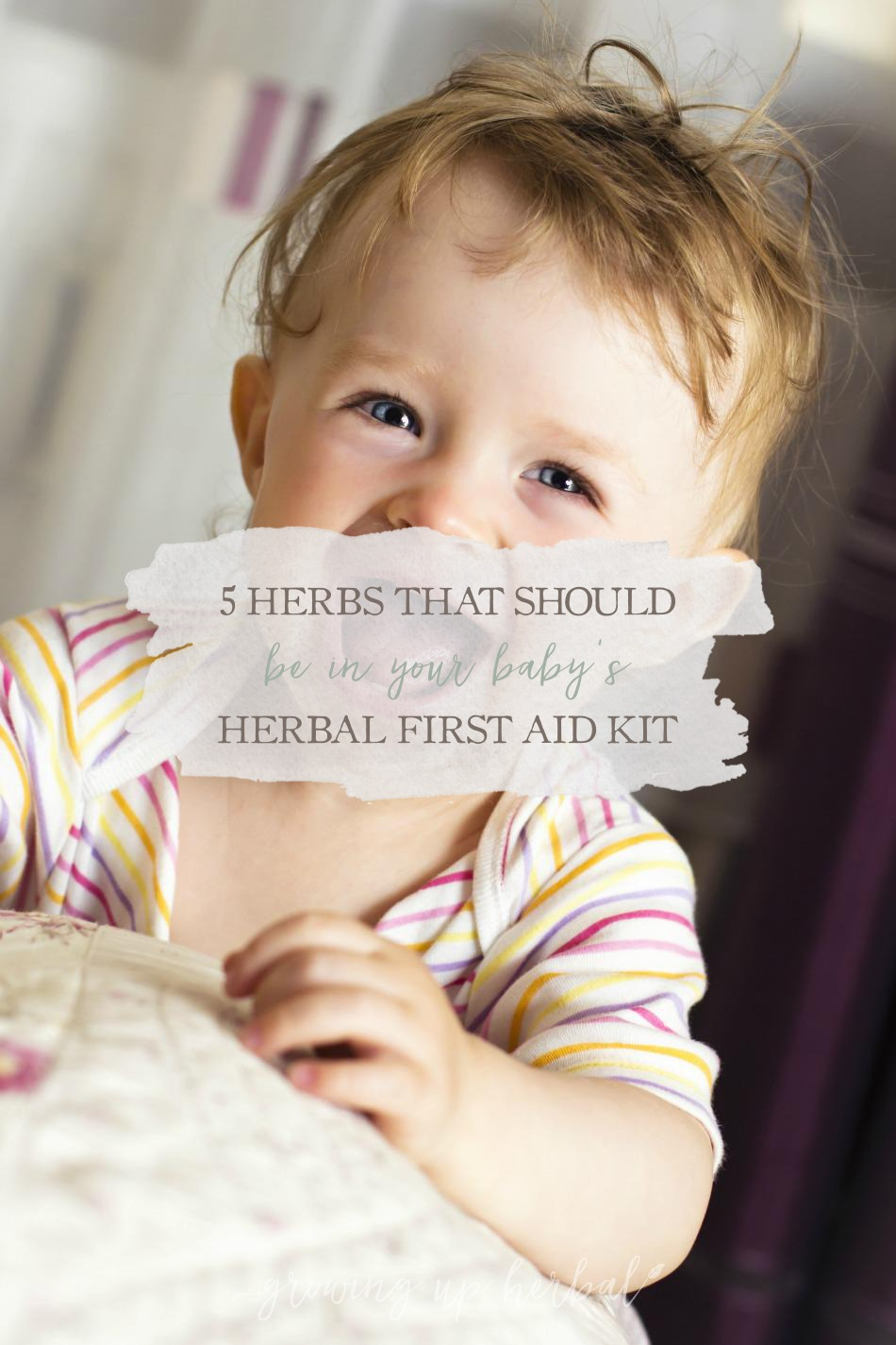 5 Herbs That Should Be In Your Baby's Herbal First Aid Kit | Growing Up Herbal | Looking for herbs for your baby's herbal first aid kit? Here are my top 5 picks!