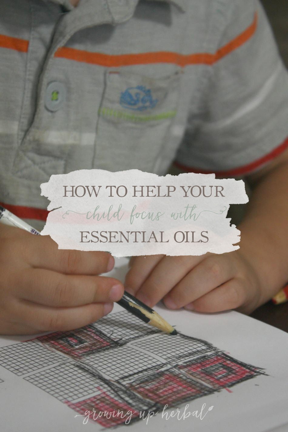 How To Help Your Child Focus Using Essential Oils | Growing Up Herbal | Learn how to help your child focus this year at school with essential oils.
