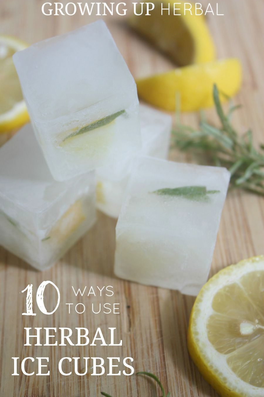 Lemon Rosemary Ice Cubes | Growing Up Herbal | Pretty up any glass of water with these easy to make Lemon Rosemary Ice Cubes!