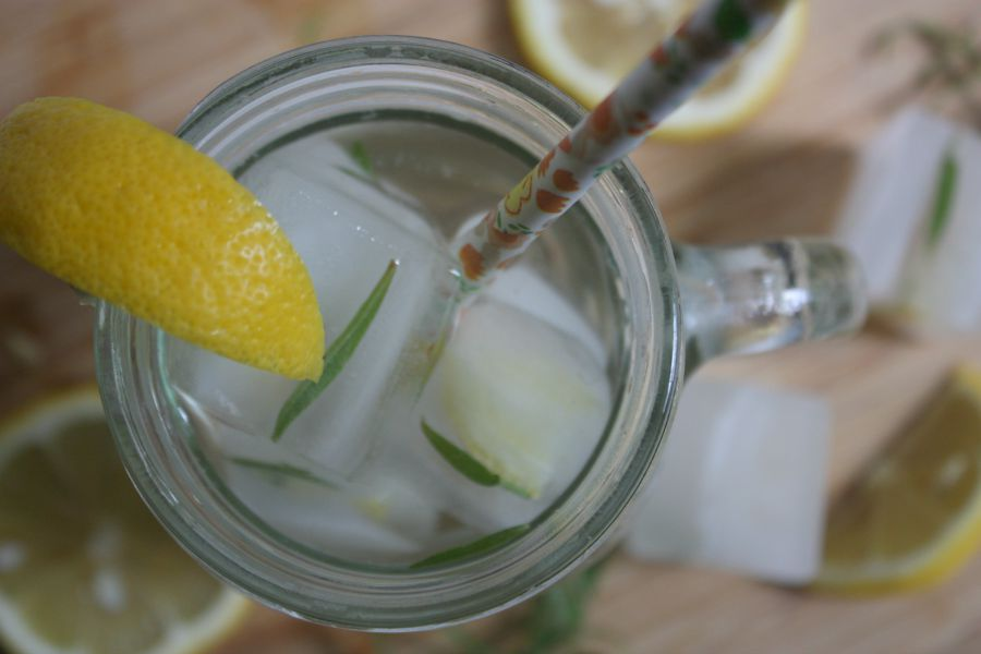 Lemon Rosemary Ice Cubes   Growing Up Herbal   Pretty up any glass of water with these easy to make Lemon Rosemary Ice Cubes!