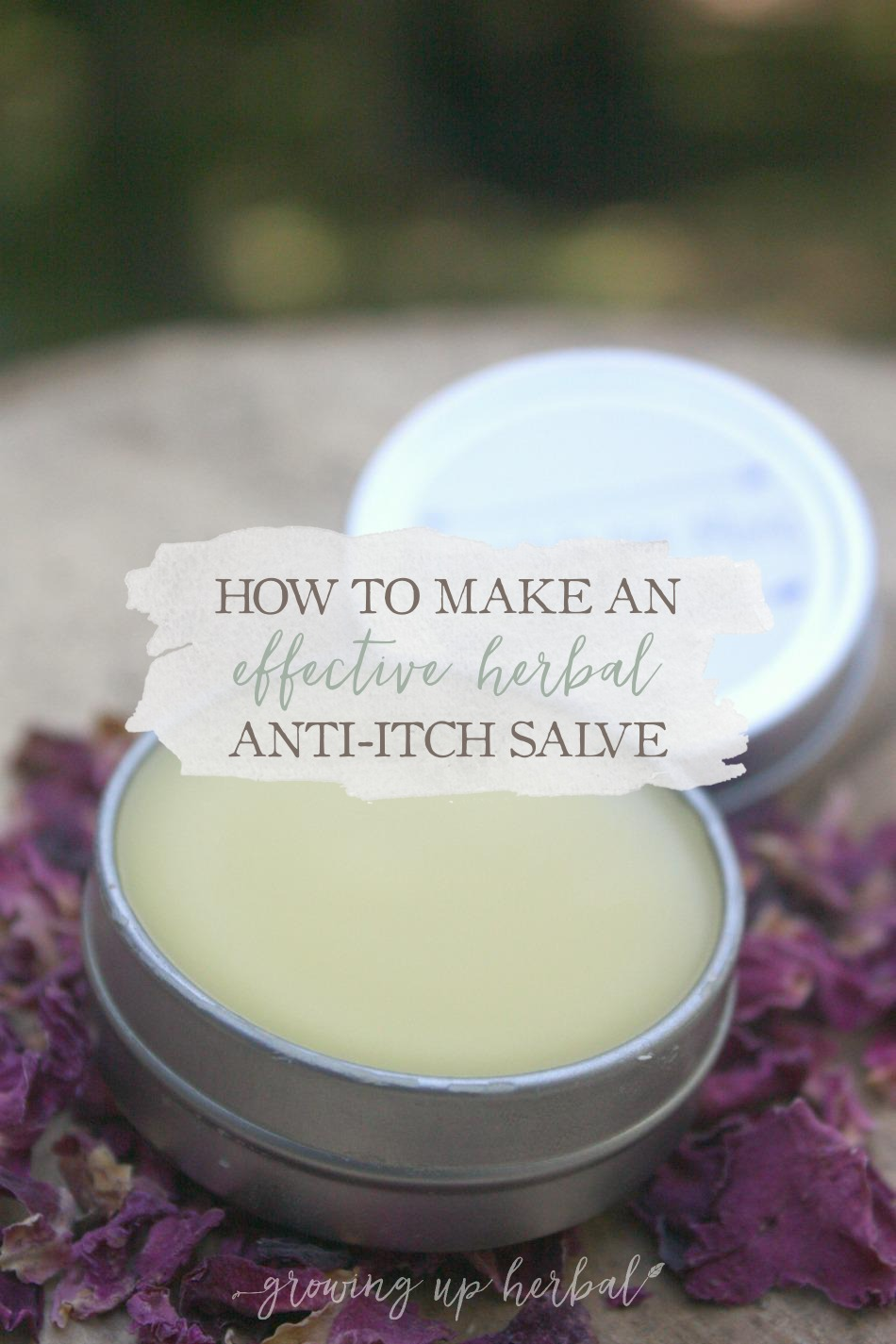 How To Make An Effective Herbal Anti-Itch Salve | Growing Up Herbal | Preventing bug bites is key, but what do you do to stop the itch if you or your kid does end up with them? Try this effective herbal anti-itch salve next time and see what you think!