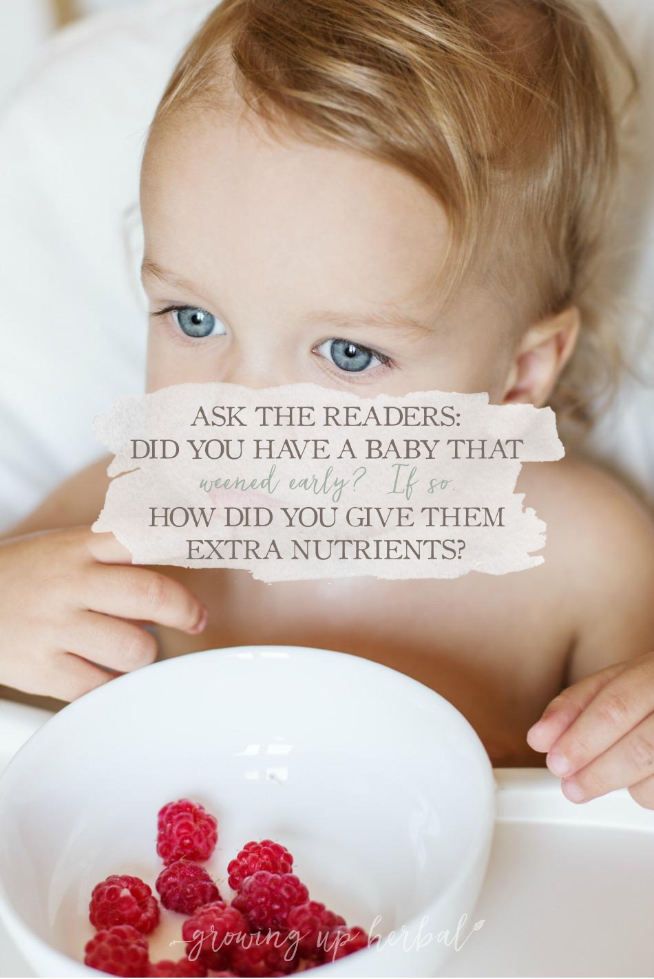 Ask The Readers: Did You Have A Baby That Weaned Early? If So, How Did You Give Them Extra Nutrients? | Growing Up Herbal | Did your baby wean early? How did you provide them with extra nutrients? I wanna hear from you!