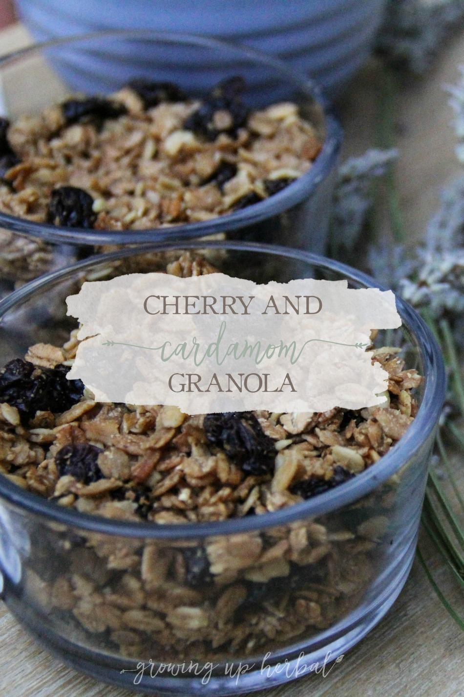 Cherry And Cardamom Granola | Growing Up Herbal | Learn how to make a delicious breakfast granola using the herb cardamom!