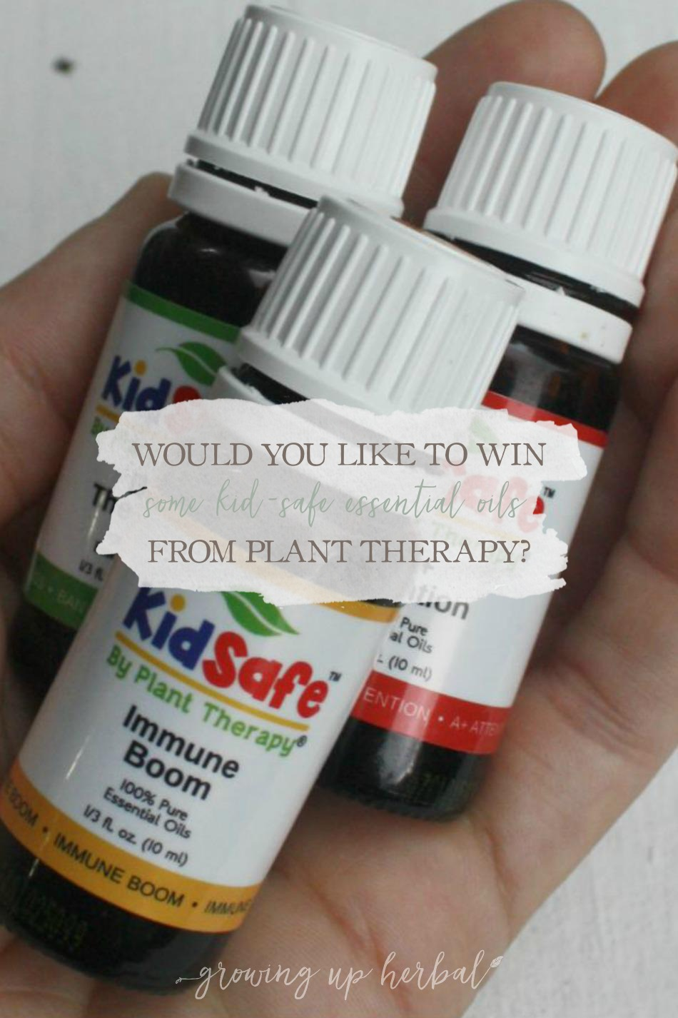 Want To Win Some KidSafe Essential Oils From Plant Therapy? Here's How! | Growing Up Herbal | Win some Plant Therapy KidSafe essential oils today!