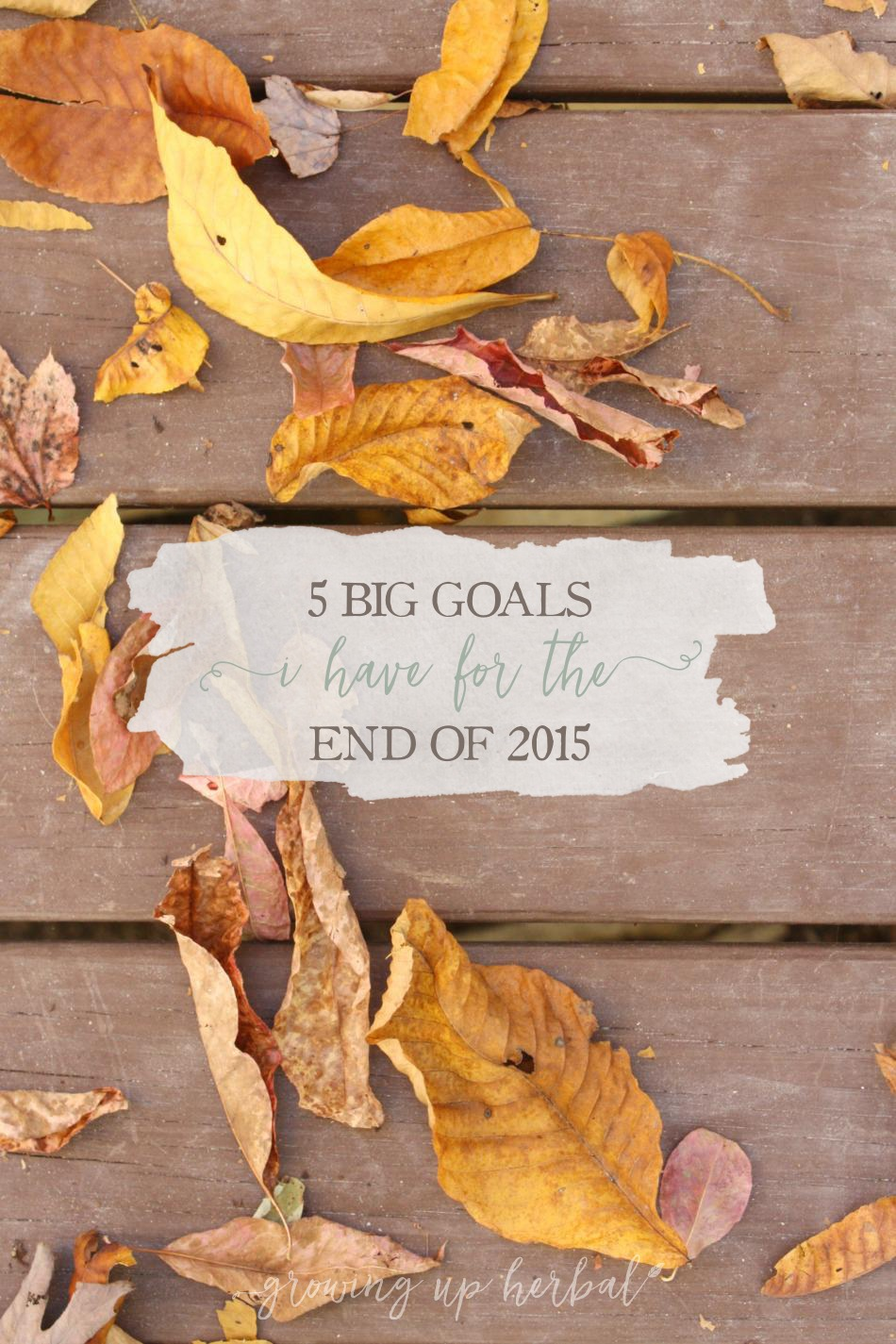 5 BIG Goals I Have For The End Of 2015 | Growing Up Herbal | Today I'm sharing my end of the year goals with you. What are yours?