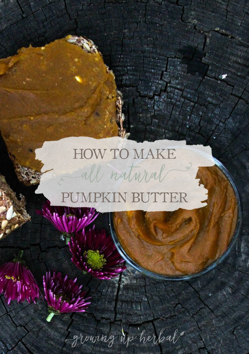 How To Make All Natural Pumpkin Butter | Growing Up Herbal | Pumpkins mean fall has officially arrived. Grab a kid and make some delicious, all natural pumpkin butter today!