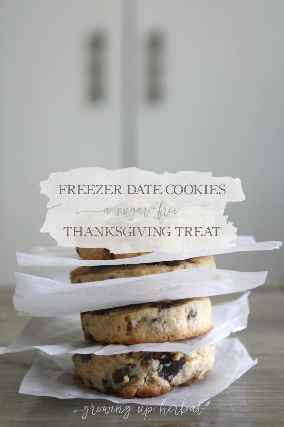 Freezer Date Cookies: A Sugar-Free Thanksgiving Treat | Growing Up Herbal | Delicious, healthy freezer date cookies, perfect for making holiday memories.