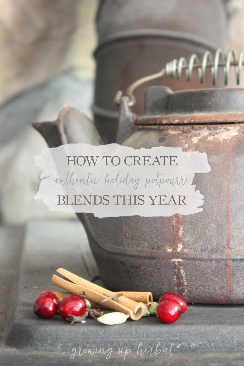 How To Create Authentic Holiday Potpourri Blends This Year | Growing Up Herbal | Get 3 easy homemade herbal potpourri blends right here!