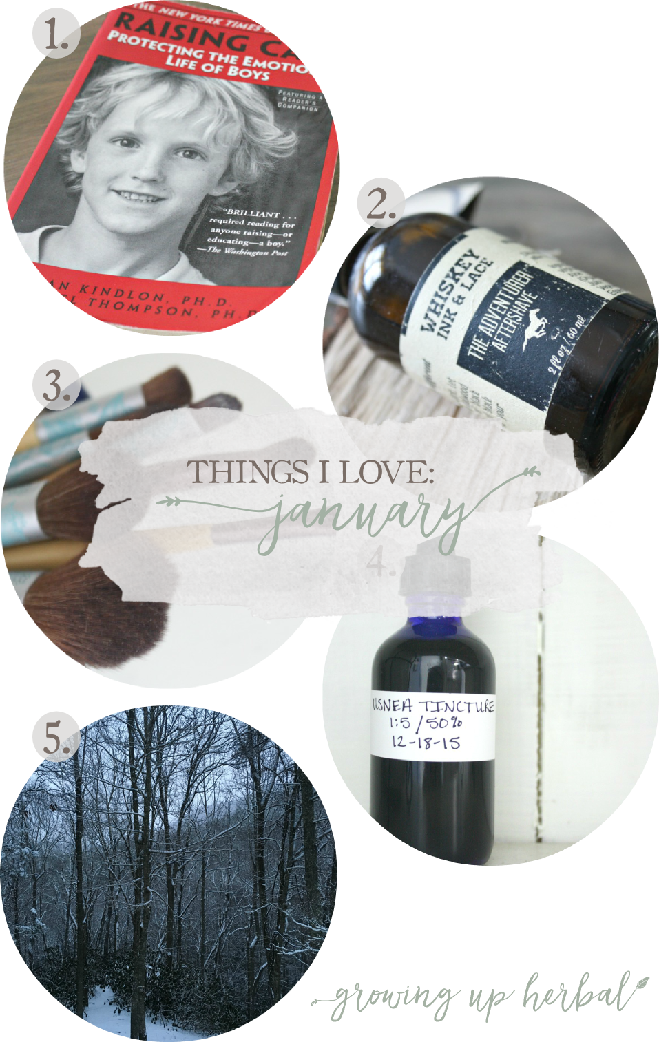 Things I Love: January 2016 | Growing Up Herbal | Here are 5 things I've loved in January 2016!