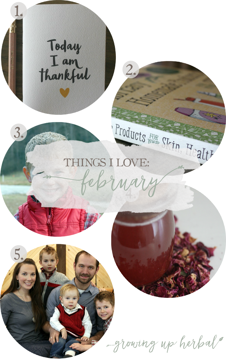 Things I Love: February | Growing Up Herbal | Here are 5 things I've loved in February 2016!