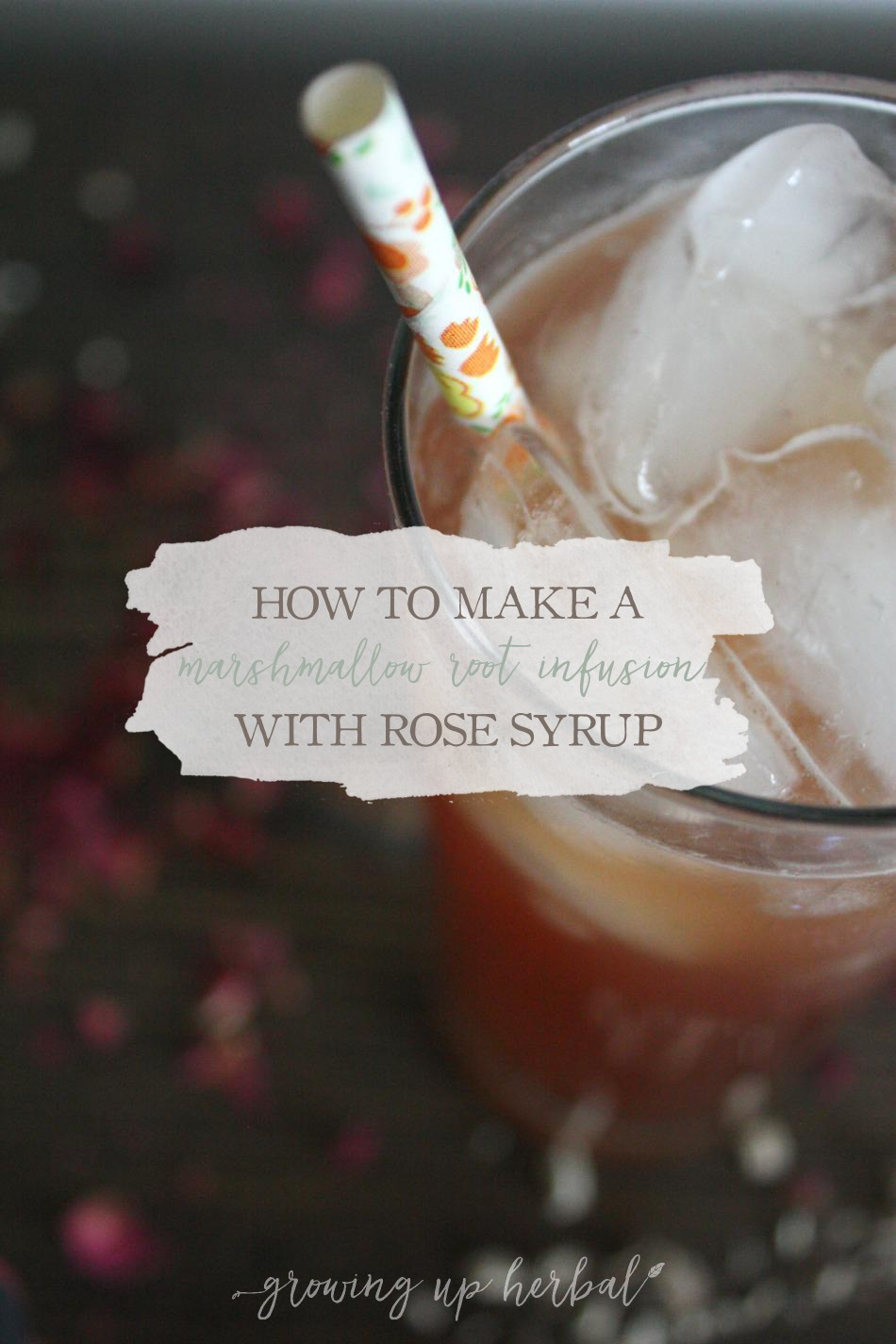 How To Make A Marshmallow Root Infusion With Rose Syrup | Growing Up Herbal | Promote healthy digestive system in your child with this soothing and tasty herbal remedy!