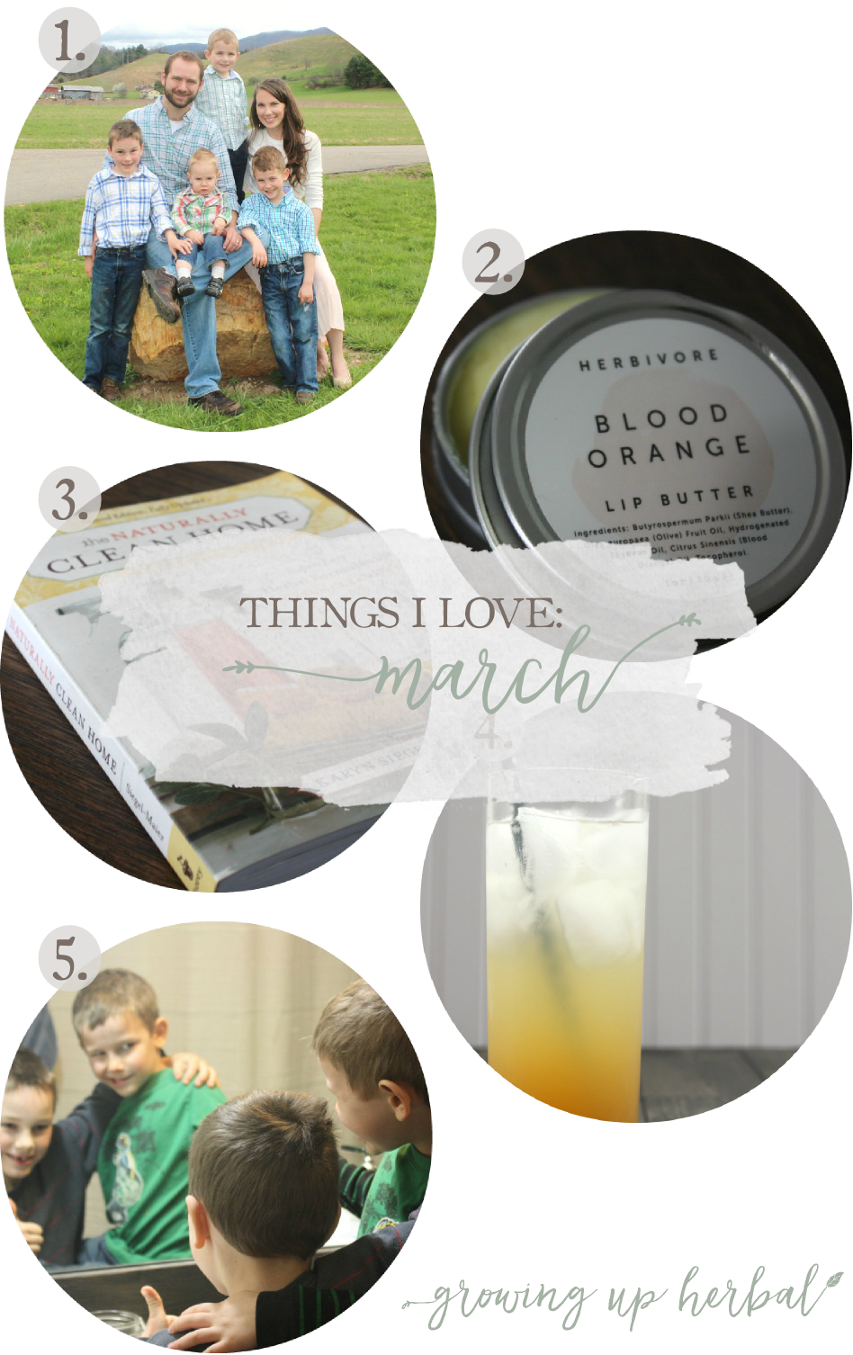 Things I Love: March | Growing Up Herbal | Easter, lip butter, ginger soda, natural home cleaning, and my crazy boys! Come see what I've been loving this past month!